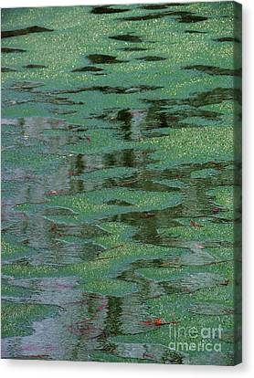 Beverly Hills St. Pats Canvas Print by Todd Sherlock