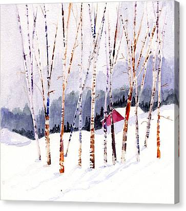 Beyond The Birch Thicket Canvas Print by Mimi Boothby