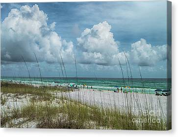 Beyond The Dunes Canvas Print by Judy Hall-Folde