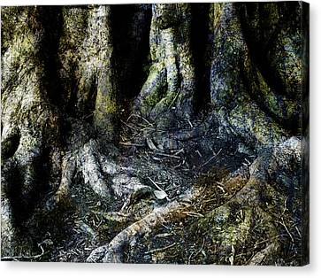 Beyond The Forest Edge Canvas Print by Kelly Jade King