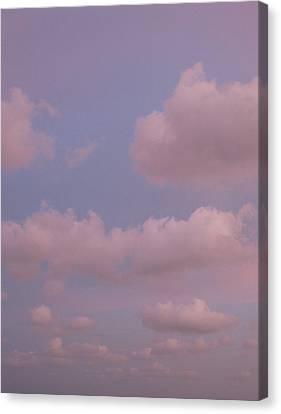 Beyond Vertical Canvas Print by Brenda Berdnik