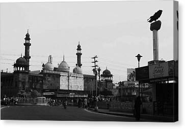 Bhopal Canvas Print by Mohammed Nasir