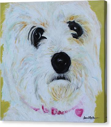 Canvas Print featuring the painting Bichon Frise-king Charles Cavalier Spaniel Mix - Molly by Laura  Grisham