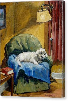 White Maltese Canvas Print - Bichon Frise On Chair by Thor Wickstrom