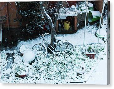 Bicycle Covered With Snow In A Garden. Canvas Print