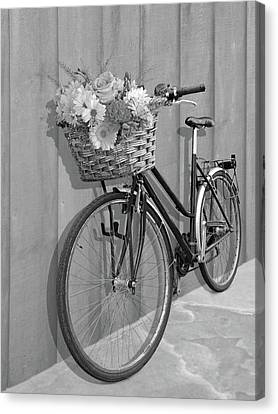 Bicycle With Flowers Canvas Print - Bicycle Flower Basket Mono by Gill Billington