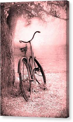 Bicycle In Pink Canvas Print by Sophie Vigneault