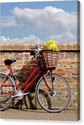 Bicycle With Flowers Canvas Print - Bicycle Shadows And Sunshine by Gill Billington