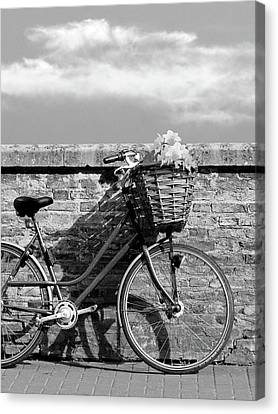 Bicycle With Flowers Canvas Print - Bicycle Shadows And Sunshine Mono by Gill Billington