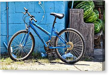 Bicycle With Watermelons Canvas Print by Linda Brown
