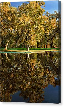 Bidwell Park Reflections Canvas Print by James Eddy