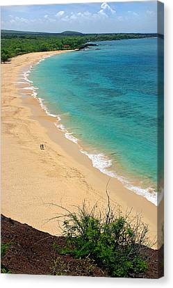 Big Beach Canvas Print by Pierre Leclerc Photography