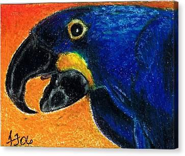 Big Blue Canvas Print by Terri Kilpatrick