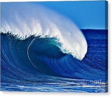 Big Blue Wave Canvas Print by Paul Topp