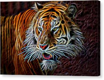 Canvas Print featuring the digital art Big Cat by Aaron Berg