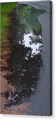 Big Crow Puddle Canvas Print by Ron Sylvia