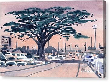 Big Cypress Half Moon Bay Canvas Print by Donald Maier