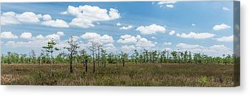Canvas Print featuring the photograph Big Cypress Marshes by Jon Glaser