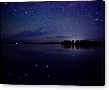 Big Dipper Reflection Canvas Print by Adam Pender