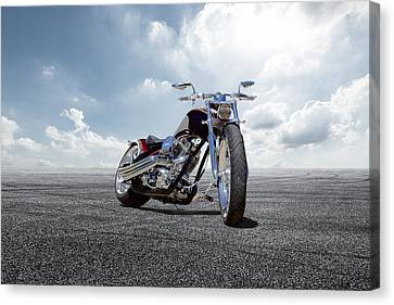 Canvas Print featuring the photograph Big Dog Pitbull by Peter Chilelli