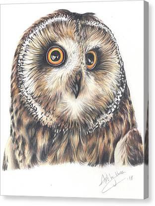 Big Eyes Canvas Print
