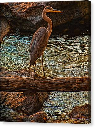 Big Falls Blue Heron Canvas Print by Trey Foerster