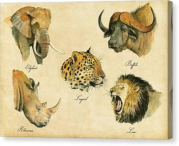 Big Five Poster Canvas Print by Juan  Bosco