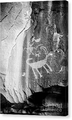 Big Horn Sheep Petroglyph 2 - Nine Mile Canyon - Utah Canvas Print by Gary Whitton