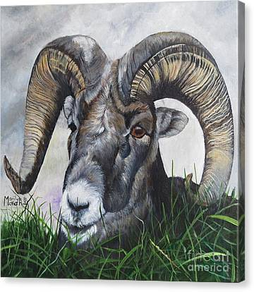 Canvas Print - Big Horned Sheep by Marilyn McNish