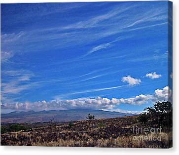 Big Island Landscape 3 Canvas Print by Bette Phelan