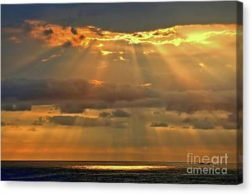 Canvas Print featuring the photograph Big Island Rays by DJ Florek