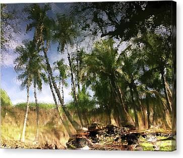 Big Island Reflections Canvas Print by Art Shimamura