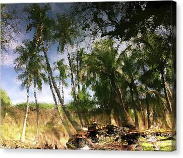 Canvas Print featuring the photograph Big Island Reflections by Art Shimamura