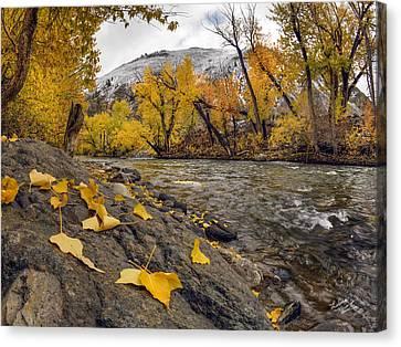 Big Lost Autumn Color Canvas Print by Leland D Howard