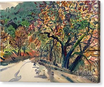 Big Oak In Niles Canyon Canvas Print