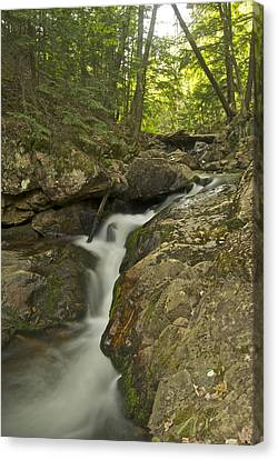 Big Pup Falls 4 Canvas Print by Michael Peychich