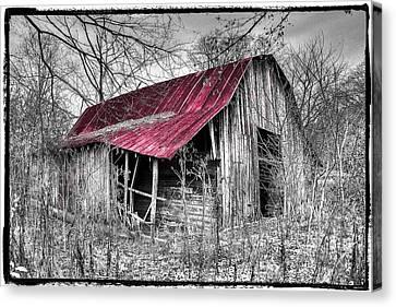 Smokey Mountains Canvas Print - Big Red by Debra and Dave Vanderlaan