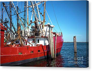 Canvas Print featuring the photograph Big Red In Barnegat Bay by John Rizzuto