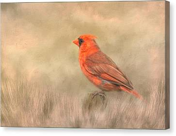 Canvas Print featuring the mixed media Big Red by Steven Richardson