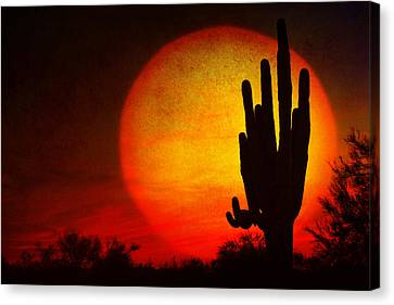 Big Saguaro Sunset Canvas Print by James BO  Insogna