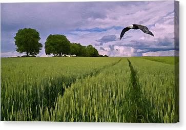 Canvas Print featuring the photograph Big Sky by David Dehner