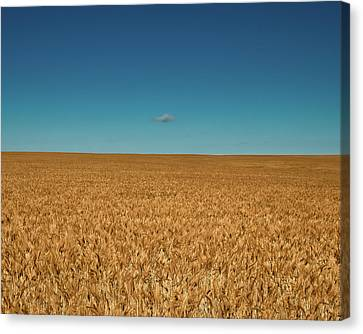 Big Sky Montana Canvas Print