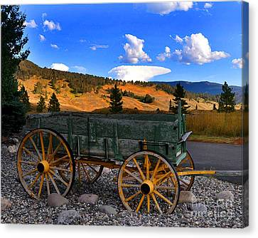 Big Sky Wagon Canvas Print by Diane E Berry