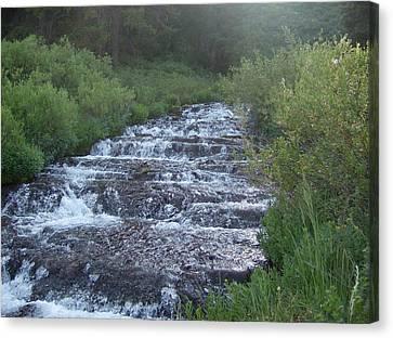 Big Springs Waterfall Canvas Print by Susan Pedrini