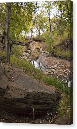 Big Stone Creek Canvas Print by Ricky Dean