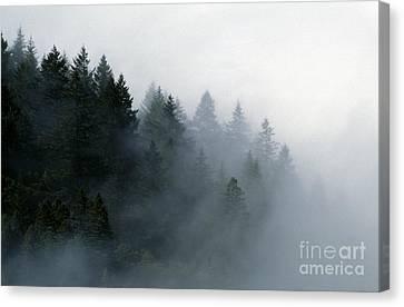 Big-sur-7-15 Canvas Print by Craig Lovell
