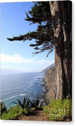 Big Sur Coastline Canvas Print by Linda Woods
