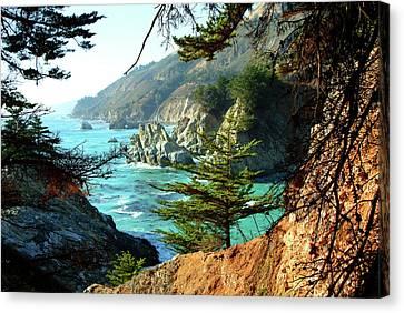 Big Sur Vista Canvas Print by Charlene Mitchell