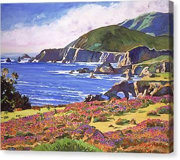 Canvas Print - Big Sur Wildflowers - Plein Air by David Lloyd Glover