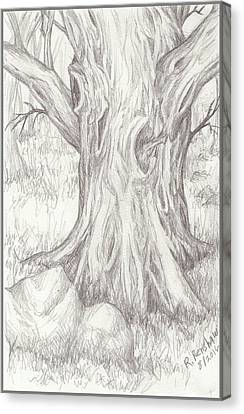 Big Tree Canvas Print by Ruth Renshaw